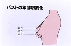 バストは女性のシンボルともいわれ、 90%が脂肪組織でできています。